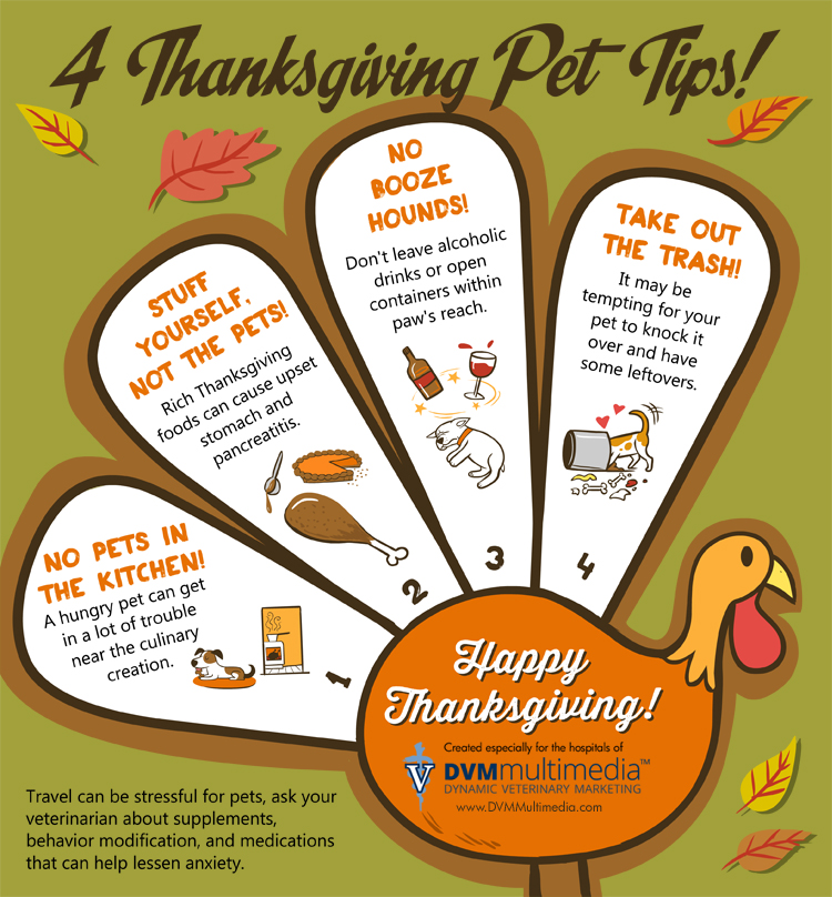 Four Thanksgiving Pet Safety Tips