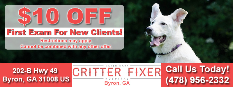 critterfixerbyronnewclientspecial